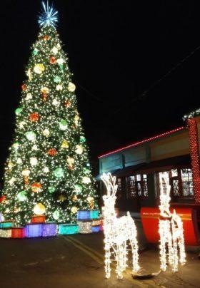 Lighted Christmas Tree and Santa sleigh